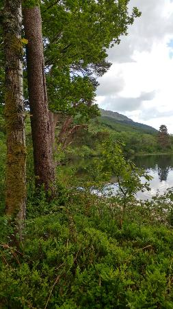 Loch Eck, UK: 20160530_153423_HDR_large.jpg