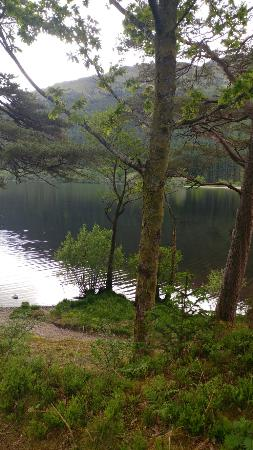 Loch Eck, UK: 20160530_153540_large.jpg