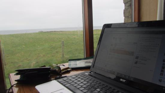North Ronaldsay Bird Observatory: The bar: A nice place to do some work and watch birds and lambs!