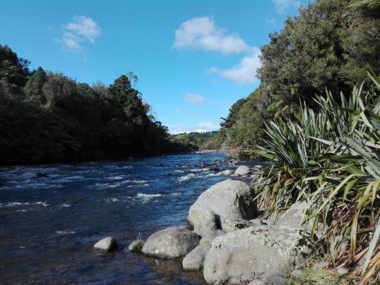 New Plymouth, Selandia Baru: Peaceful walk beside the river on a crisp winters morning
