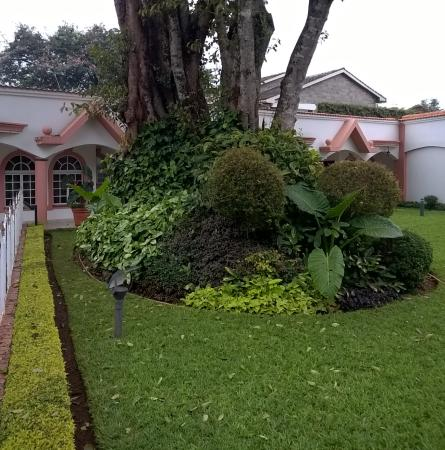 Villa Leone: The front garden area