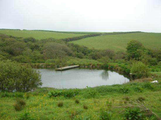 Reddivallen Farm: Lago cercano