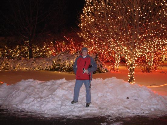 Lights Before Christmas - Picture of Toledo Zoo, Toledo - TripAdvisor