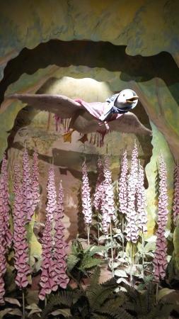 The World of Beatrix Potter: Jemima Puddle Duck