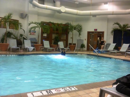 Hilton Garden Inn Annapolis : piscina del hotel