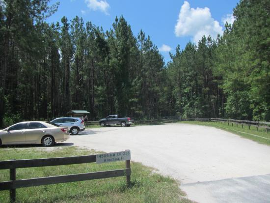 Alachua, FL: Parking area for start of the trail