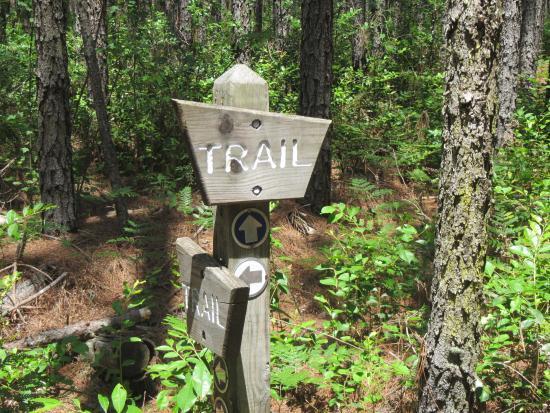 Alachua, FL: Trail sign labels