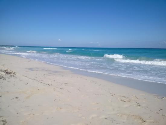 Maravillosa experiencia en Mar del Sur