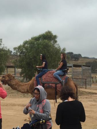 Ramona, Kalifornien: Very fun experience