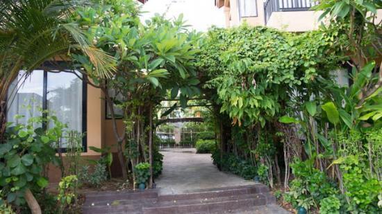 Asara Villa & Suite: 寛敞又舒適的套房,可暢泳的泳池