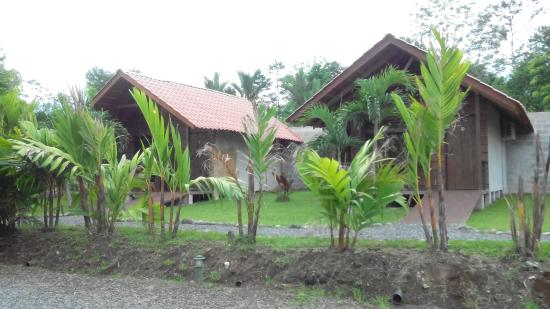 Arenal Green Hotel Picture