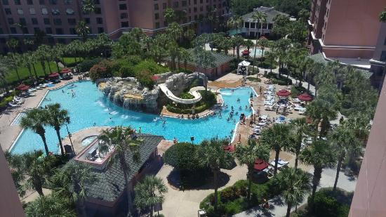 Caribe Royale All Suite Hotel & Convention Center - Picture of Caribe Royale Orlando - TripAdvisor