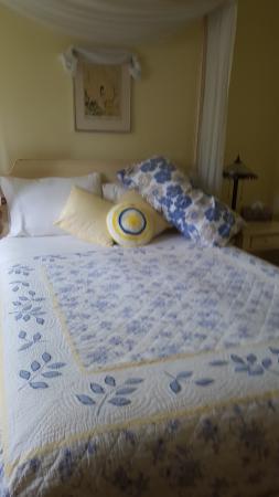 Sanivan Holistic Retreat and Spa: My room.