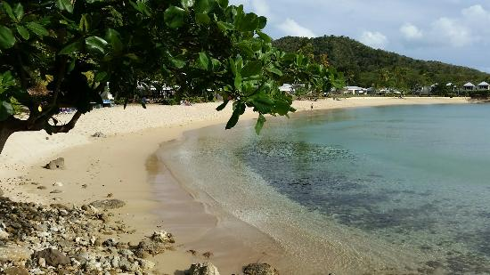 Hawksbill by Rex Resorts: Our stay at end of May 2016