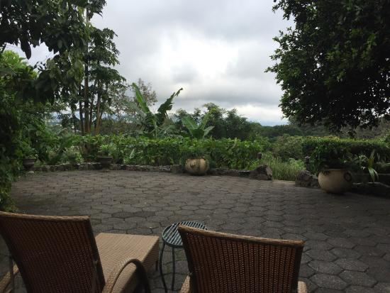 Finca Rosa Blanca Coffee Plantation & Inn: photo2.jpg