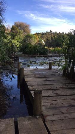 Patumahoe, Νέα Ζηλανδία: photo0.jpg