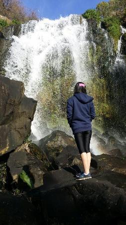 Patumahoe, Nova Zelândia: photo3.jpg
