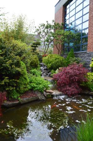 jardin japonais sains du nord 2019 ce qu 39 il faut. Black Bedroom Furniture Sets. Home Design Ideas