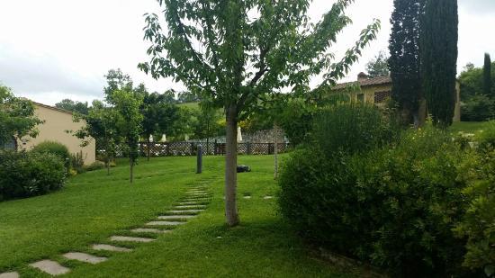 Montespertoli, Italia: IMG-20160602-WA0016_large.jpg
