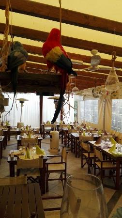 Ristorante bagno buoniamici lido di camaiore restaurant reviews phone number photos - Bagno danila lido di camaiore ...