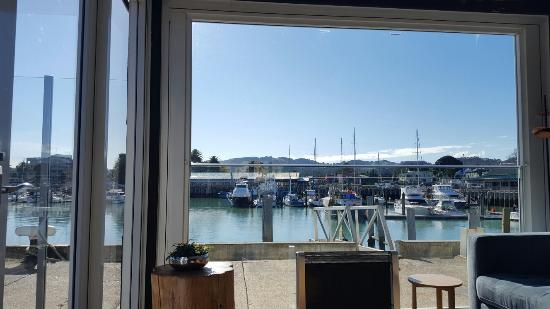 Gisborne, Nova Zelândia: 20160605_122558_large.jpg