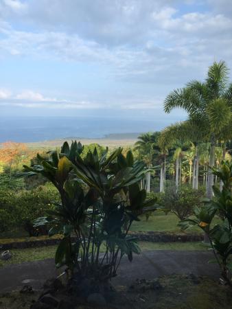 Aloha Guest House-billede