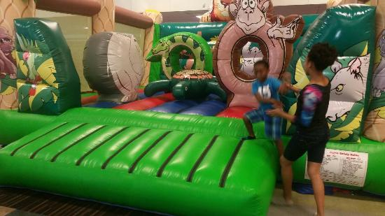 The Bounce Palace