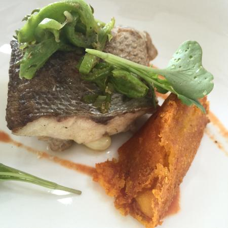 Exceptional Culinary Root fusion at Saraguro