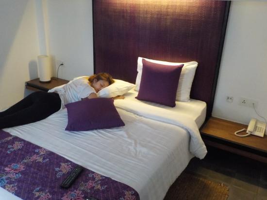 The Purple Mangosteen صورة فوتوغرافية