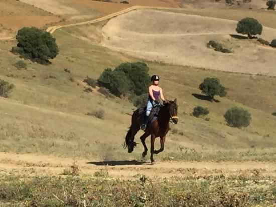 Molino de Saladilla / HorseridingSpain: Lovely Gallop over fabulous country side