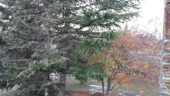 Mackenzie Country Inn: 20160605_170055_large.jpg