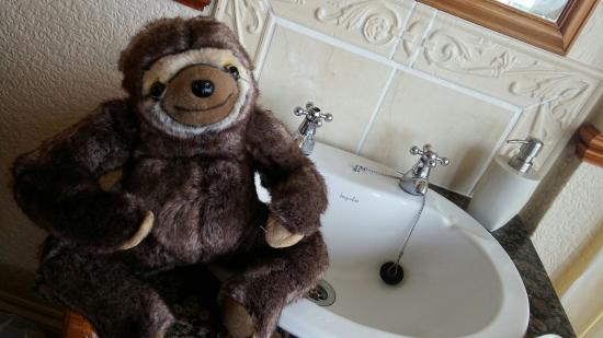 Tregella Guest House Newquay: Neal the Sloth and views from the window