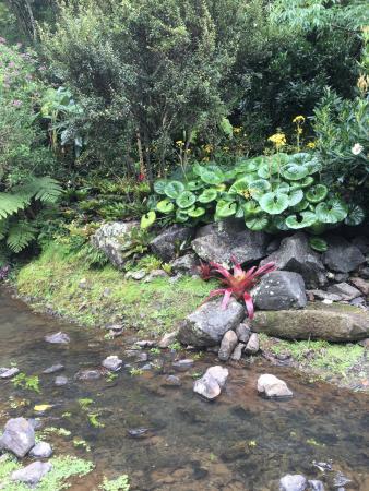 Whangarei, New Zealand: photo0.jpg