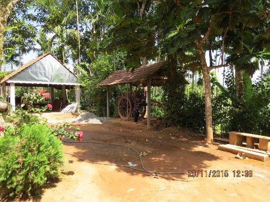 Kudajadri Drizzle Homestay Photo