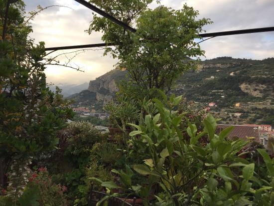 la terrazza dei pelargoni - Foto di La Terrazza Dei Pelargoni B&B ...