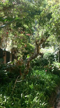Hostal Isla de Banos: DSC_0001_2_large.jpg