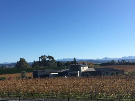Marama Vineyard: Milcrest Estate