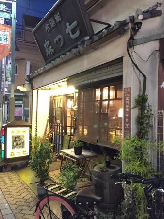Nanatsumori