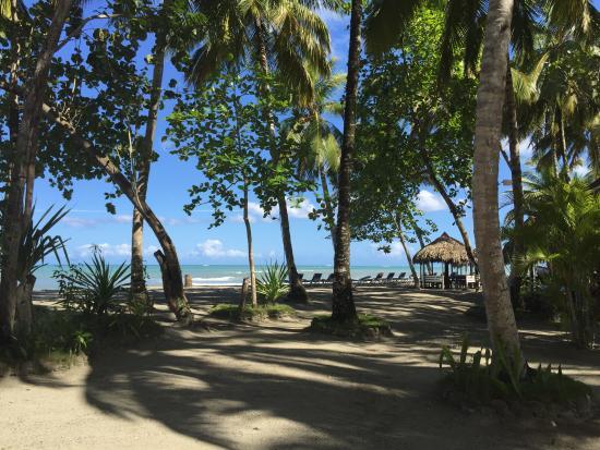 Gaspar Hernandez, República Dominicana: plage