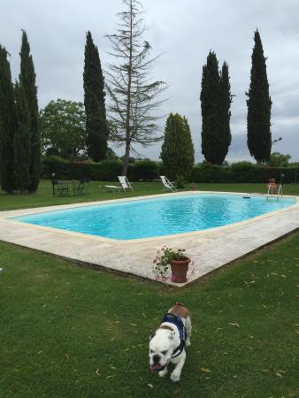 Scrofiano, Italia: Un weekend favoloso!! L'appartamento Elisa è da wow!! La signora Anna è gentilissima!! Ottima la