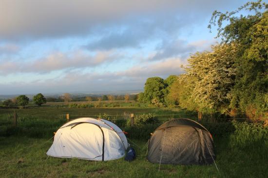 Greencarts Farm: campsite