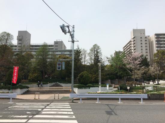 Shin Nagashima River Shinsui Park