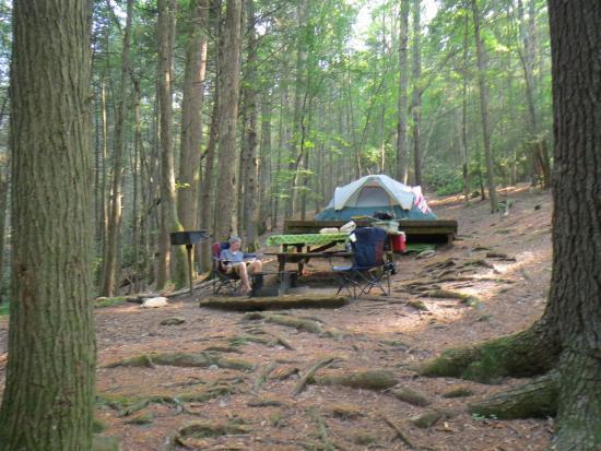 Vogel State Park Campground: Walk In Site D
