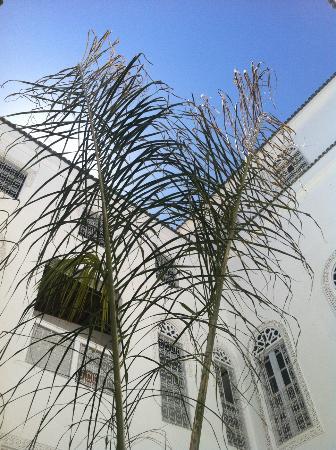 Riad Blanc de Fes