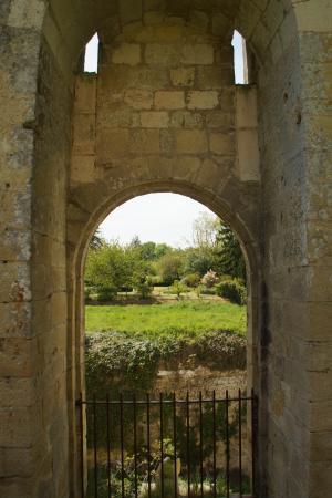 Le Donjon de La Cité Royale de Loches