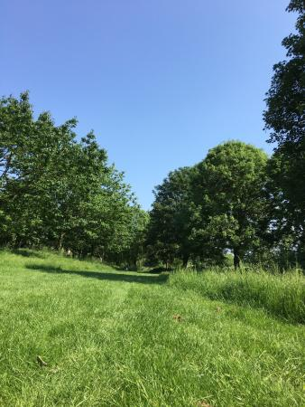 Central Park, Bell Meadow and Sky Blue Pasture