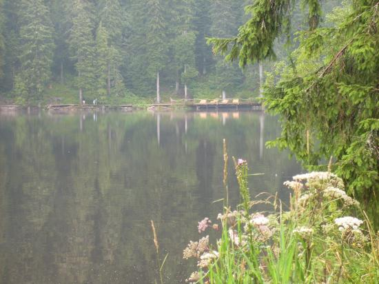 Berghotel Mummelsee Picture