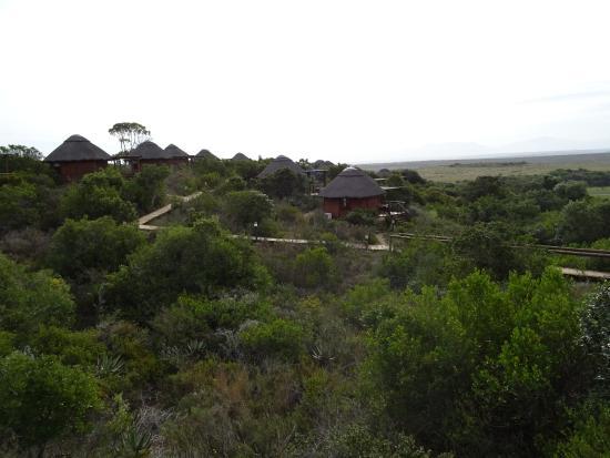 Garden Route Game Lodge Photo