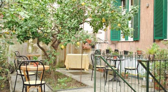 Albergo Giusti: Jardin