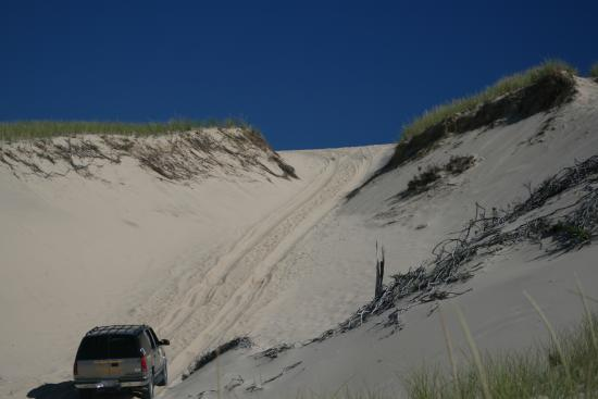 West Barnstable, MA: Dune Tour